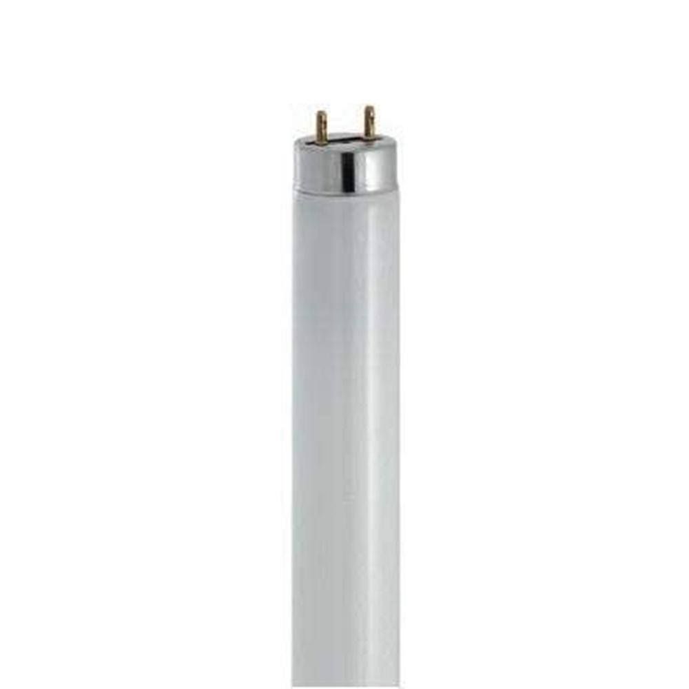 Neon fluorescente lineare 1300 lumen 600 mm 6500K T8 TRIMAX 18W G13 865 - BEGHELLI 52103