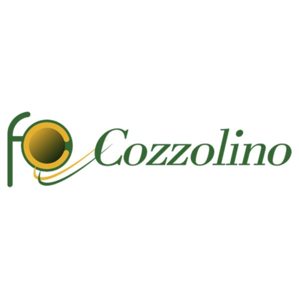 Tassello in Acciaio con Vite 12x45mm 4 Pezzi - ETELEC ITALIA TA0040